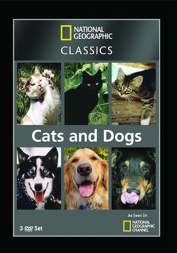 National Geographic Classics: Cats & Dogs (DVD) by National Geographic