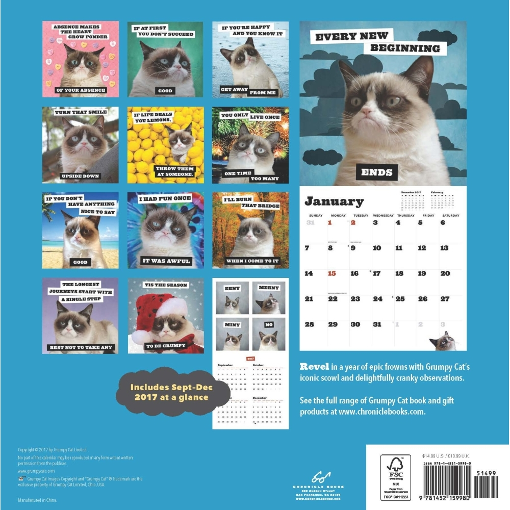 Grumpy Cat Wall Calendar, Grumpy Cat by Chronicle Books - Walmart.com