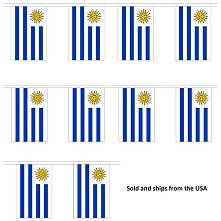10' Uruguay String Flag Party Bunting Has 10 Uruguayan 6