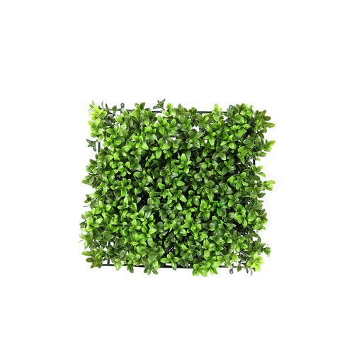 Charlton Home Floor Boxwood Topiary