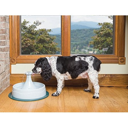 PetSafe Drinkwell 360 Dog and Cat Water Fountain, 128 (Drinkwell 360 Dog Cat)
