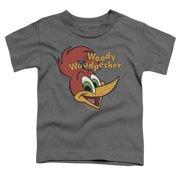 Woody Woodpecker Retro Logo Little Boys Shirt