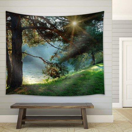 wall26 - Pine Tree and Sun Rays Through the Branches at Misty Morning - Fabric Wall Tapestry Home Decor - 68x80 inches