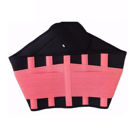 Active Authority Y 123L P Waist Support   Lumbar Brace   Lower Back Belt  Pain Relief  Breathable Material   Pink  L Size  110Cm 23Cm