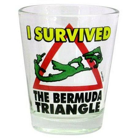 Bermuda I Survived Bermuda Triangle Shot (Triangle Glasses)