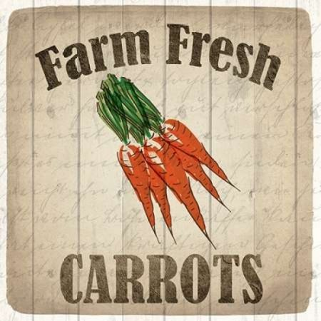 - Farm Fresh Carrots Poster Print by Kimberly Allen (12 x 12)