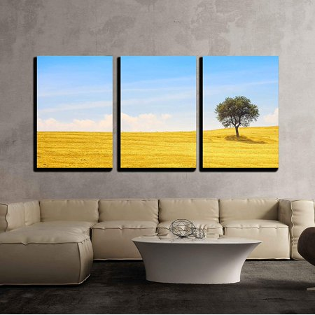 """wall26 - 3 Piece Canvas Wall Art - Tuscany Country Landscape, Olive Tree and Green Fields Montalcino, Italy, Europe - Modern Home Decor Stretched and Framed Ready to Hang - 24""""x36""""x3 Panels"""