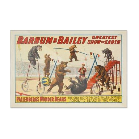 Barnum   Bailey   Pallenbergs Wonder Bears Vintage Poster Usa C  1915  12X8 Acrylic Wall Art Gallery Quality