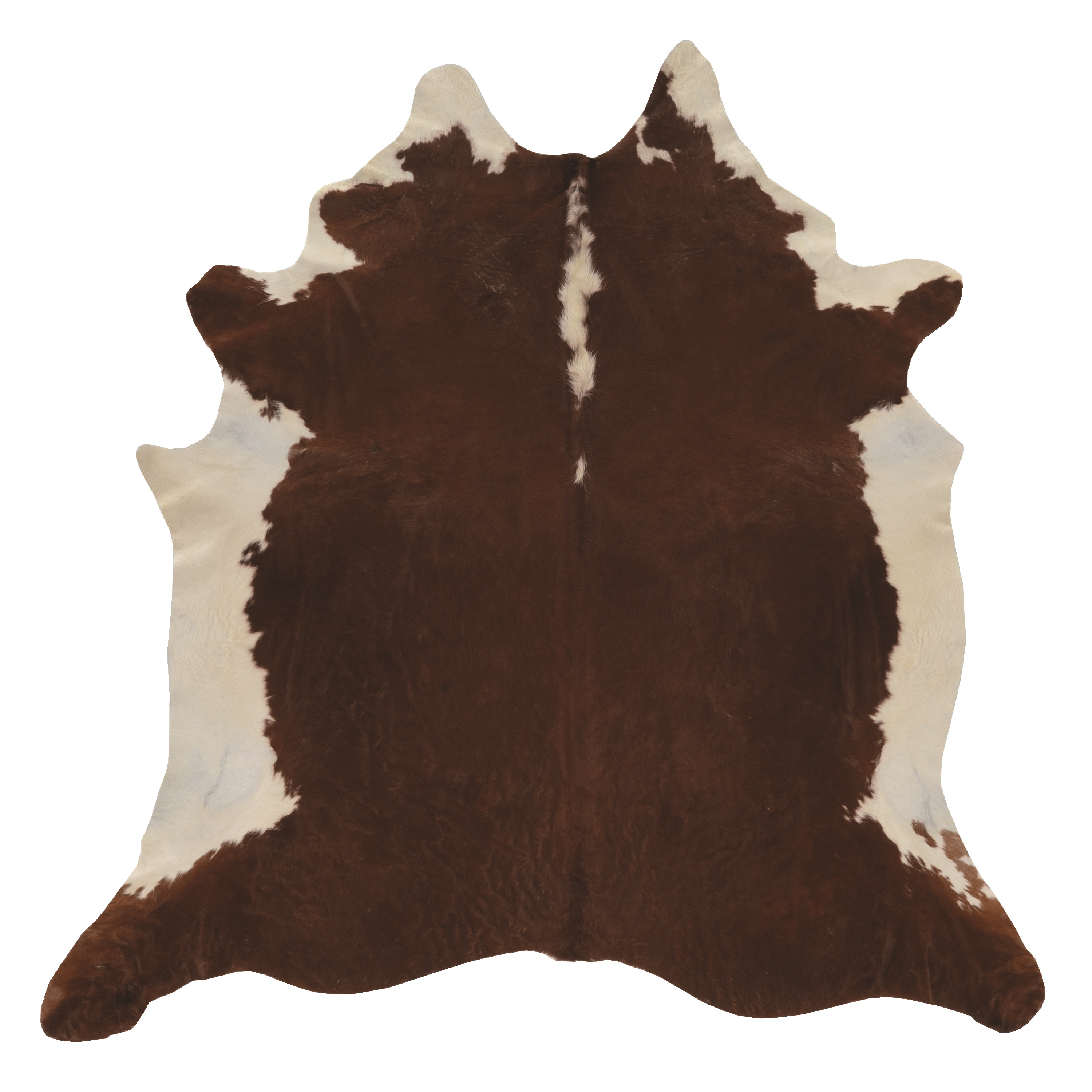 Cowhide, Brown Stencil and Brown Stencil Full Skin by Linon Home Decor Products Inc