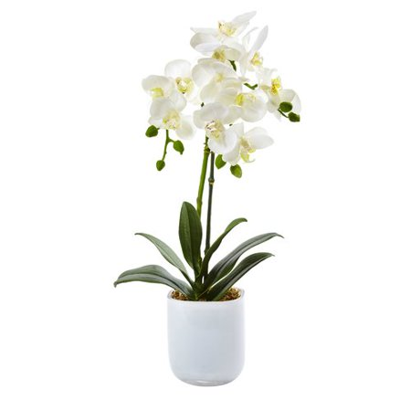 Decorative Floral Arrangements (Nearly Natural Phalaenopsis Orchid Floral Arrangements in Decorative Vase )
