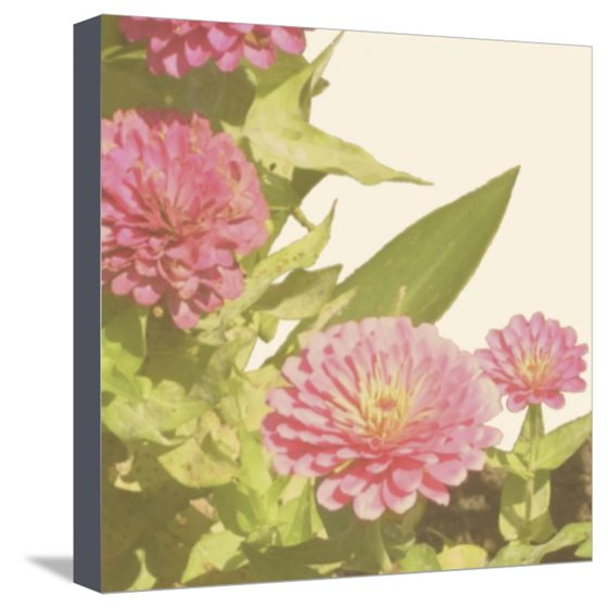 Vintage Bloom IV Stretched Canvas Print Wall Art By Megan Meagher ...