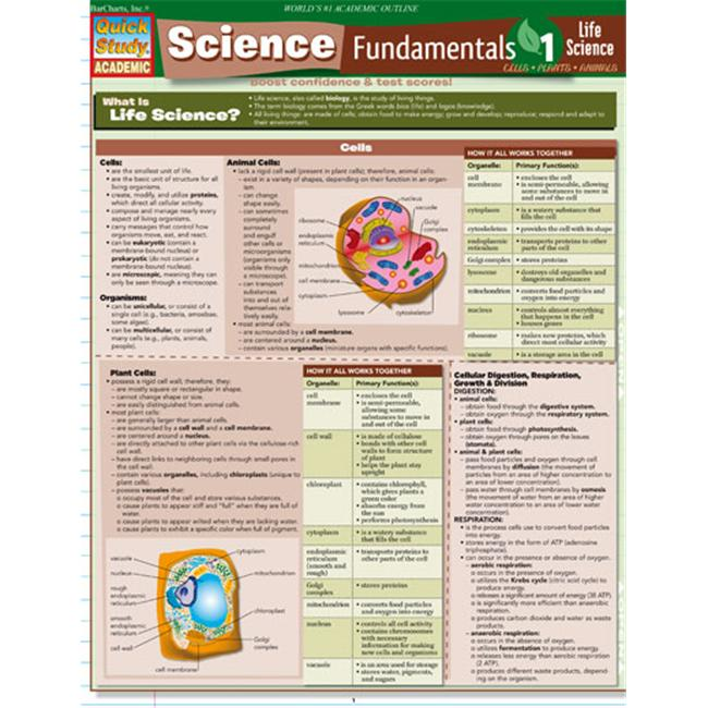 BarCharts- Inc.  9781423208662 Science Fundamentals 1