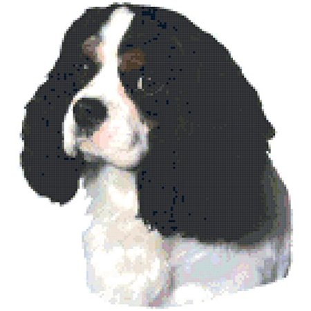 Tri Cavalier King Charles Spaniel - Tri Color Cavalier King Charles Spaniel Dog Portrait Counted Cross Stitch Pattern