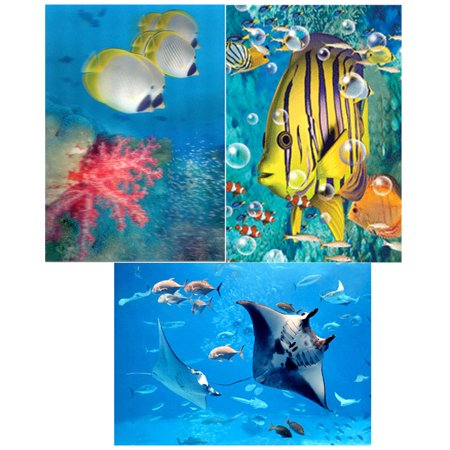 (FISH: 3D Lenticular 3 Postcard Greeting Cards -  Panda Butterflyfish and corals, Aquatic View and Manta Ray)