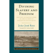 Divining Slavery and Freedom : The Story of Domingos Sodré, an African Priest in Nineteenth-Century Brazil