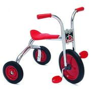 12 in. Trike with Steel Wheels
