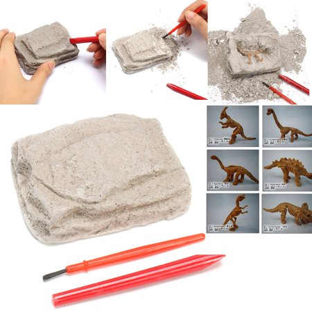 Dinosaur Excavation Kit - Dig It Up History Skeleton Model Kids Science Learning Playsets Toy (Dig Up)