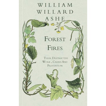 Forest Fires - Their Destructive Work, Causes And Prevention (Paperback)