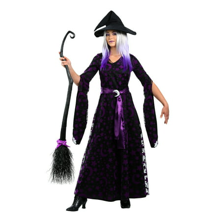 Womens Plus Size Purple Moon Witch Costume](Plus Size Womens Witch Costume)