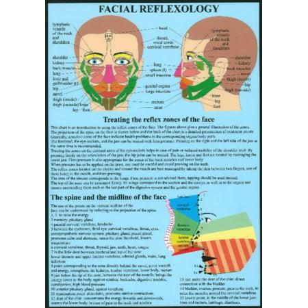 Réflexologie faciale (Affiche)