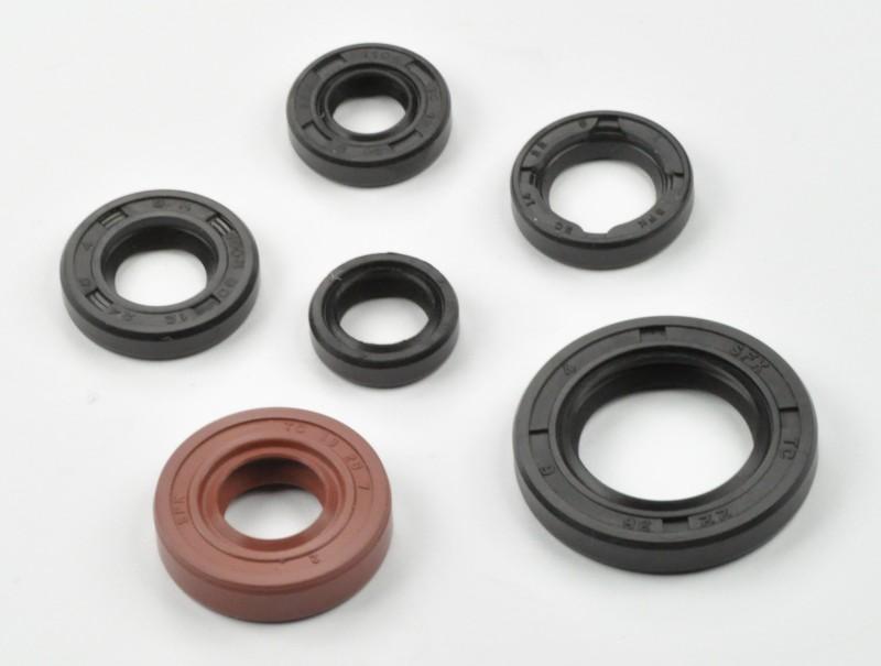 Engine Oil Seal Kit for Honda TRX 300EX 1993-2008