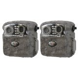 Wild Game Innovations Buck Commander Nano 6 Hunting Trail Camera (Two Pack)