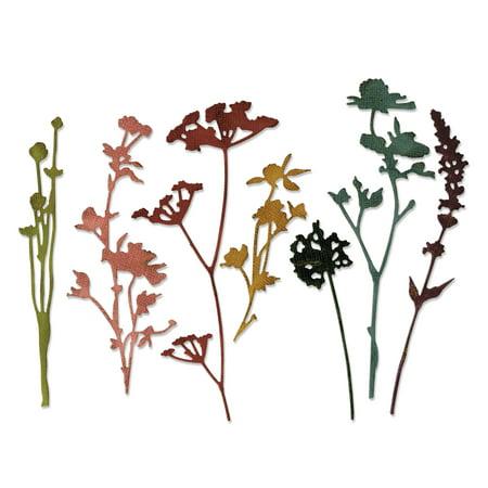 Sizzix Thinlits Dies - Wildflowers #1 by Tim Holtz - Tim Holtz Halloween Cards