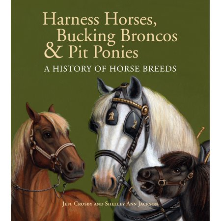 Bucking Bronco Embroidery (Harness Horses, Bucking Broncos & Pit Ponies : A History of Horse)