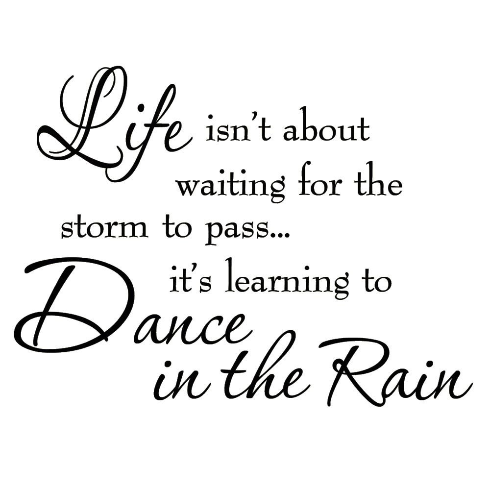 Vwaq Life Isnt About Waiting For The Storm To Pass Its Learning To