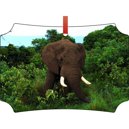 Ornament Elephant African Elephant in the Jungle Double Sided Elegant Aluminum Glossy Christmas Ornament Tree Decoration - Unique Modern Novelty Tree Décor Favors - Jungle Tree Decorations