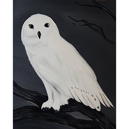 Snow Owl 30x24 Canvas Art Print Poster Snowy Symbolism Magic Luck By
