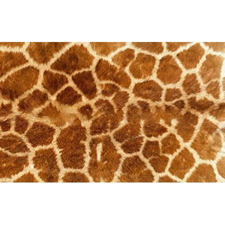 Real Giraffe Print Edible Icing image Cake Topper for 1/4 sheet cake