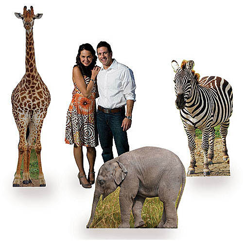 Safari Animal Standee Set Jungle Party Props