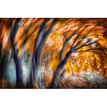 Autumn Breeze Print Wall Art By Ursula Abresch