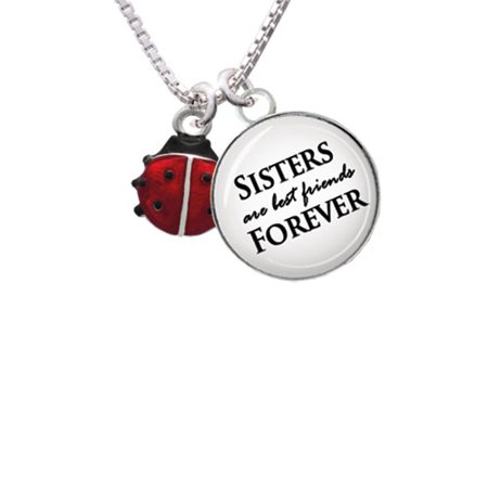 Mini Red Translucent Ladybug Sisters are Best Friends Forever Glass Dome Necklace,
