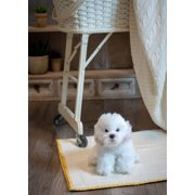 Bichon Frise Large 11 inches Dog & Puppy Stuffed Animal by Nat and Jules 00044