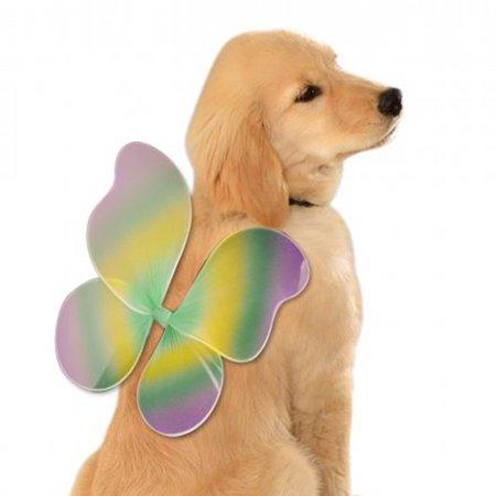 Fairy Wings Dog Costume - Mardi Gras - Medium/Large