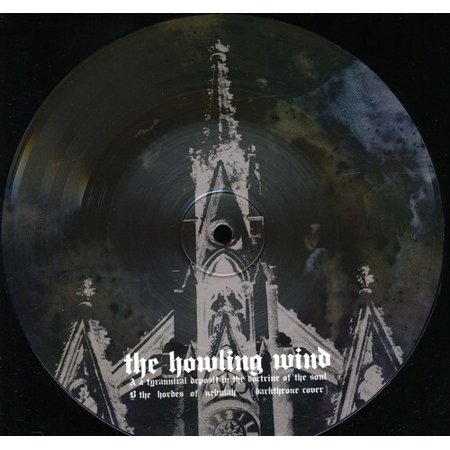 A Tyrannical Deposit In The Docterine Of The Soul  Vinyl   7 Inch