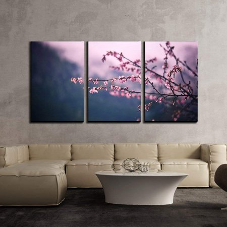 wall26 - 3 Piece Canvas Wall Art - Closeup of Cherry Blossom Branch - Modern Home Decor Stretched and Framed Ready to Hang - 16