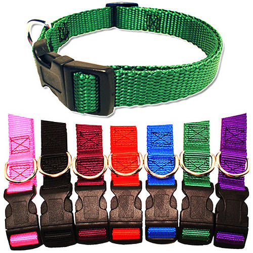 Majestic Pet 8'' - 12'' Adjustable Collar in Multiple Colors Fits Most 2-12 lbs Dogs