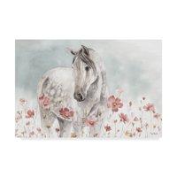 Trademark Fine Art 'Wild Horses I' Canvas Art by Lisa Audit