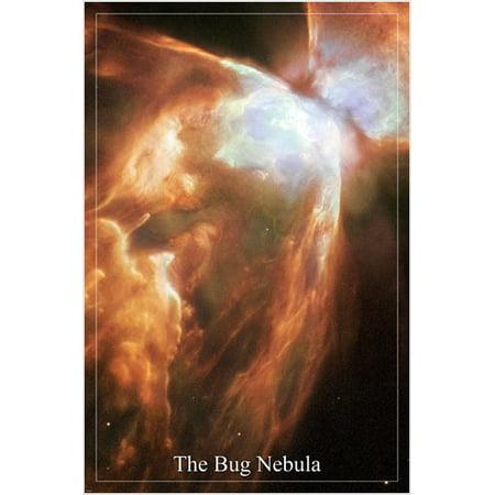 The Bug Nebula Hubble Space Telescope Image Poster 24X36 Surprising Details