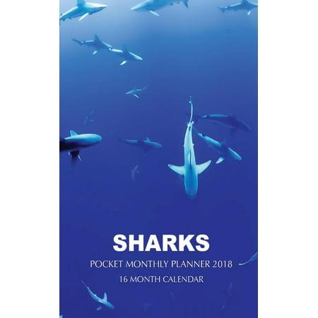 - Sharks Pocket Monthly Planner 2018: 16 Month Calendar (Paperback)