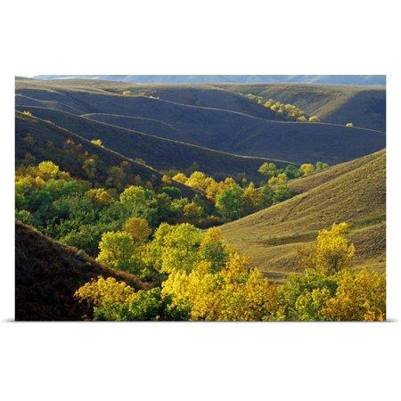 Great Big Canvas Mike Grandmaison Poster Print Entitled Aspen Bluffs In Autumn Colors  Saskatchewan  Canada