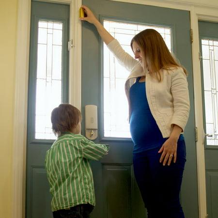 Cardinal Gates Door Guardian Childproofing Lock