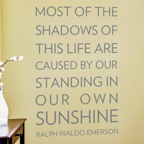 Wallums Wall Decor Most of the Shadows Wall Decal