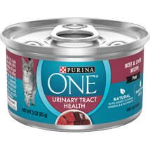 Cat Food: Purina ONE Urinary Tract Health Formula Wet Food