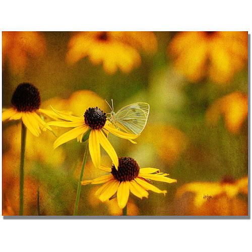 "Trademark Fine Art ""Butterfly on a Flower"" Canvas Wall Art by Lois Bryan"