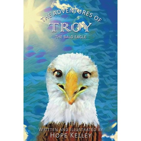 The Adventures of Troy the Bald -
