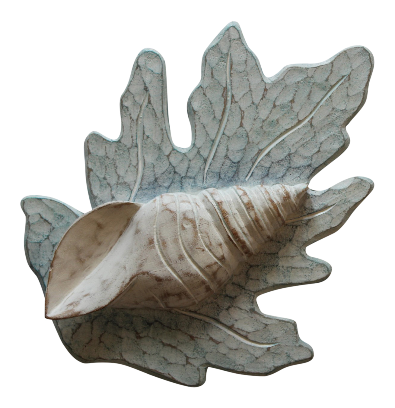White Turban Shell on Aqua Reef Carved Wood Wall Plaque 11 Inches